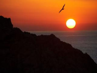 обои Золотой закат над морем фото