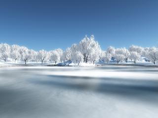 обои Белые деревья у замeршего озера фото