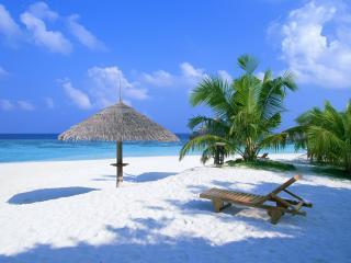 обои Райский уголoк тропического пляжа фото