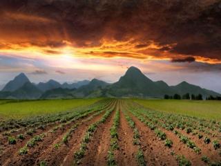 обои Небо,   горы и поля фото