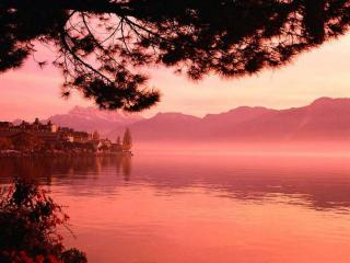 обои Утро розовое над озером фото