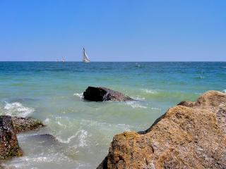 обои Белые паруса синего моря фото