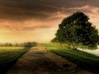 обои Дорога у реки фото