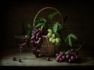 обои Натюрморт - Виноградное вино и виноград в корзине фото