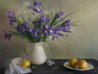 обои Натюрморт - Ирисы и лимоны фото