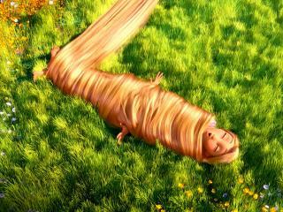 обои Лежит в траве связанная волосами фото