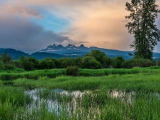 обои Травянистое озеро у подножия гор фото
