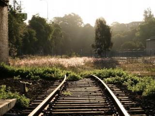 обои Заросший обрыв железной дороги фото