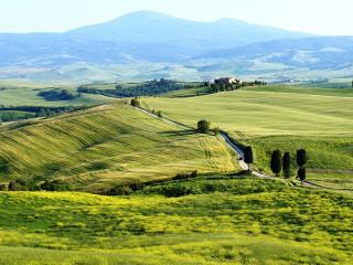 обои для рабочего стола: Панорамa с дорогой полевой