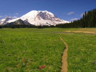 обои Тропа через поле в горы фото