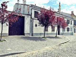 обои Осенние деревья у здания фото