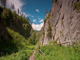 обои Тропинка в ущелье Алтайских гор фото