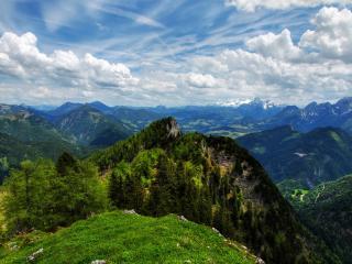 обои Зеленые горы с деревьями фото