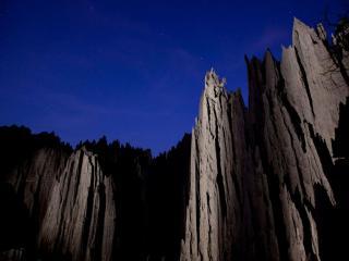 обои Ночь в каменном лесу фото