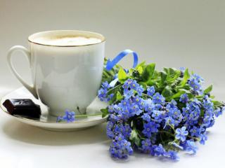 обои Натюрморт - Незабудки,   шоколад и чашка кофе фото