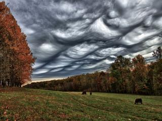 обои Облака осенние фото