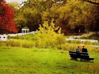 обои Прогулка в осеннем парке фото