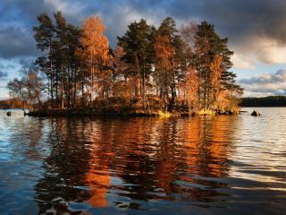 обои Небольшой островок с деревьями среди озера фото