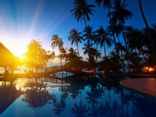 обои Закат на фоне реки и пальм фото