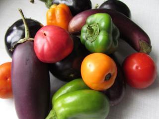 обои Овощной урожай фото
