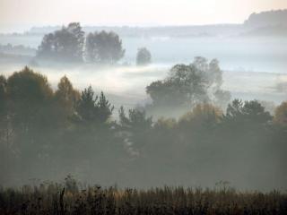обои Осенний утренний туман фото