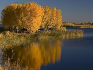 обои Осень в дельте реки Или. Казахстан фото