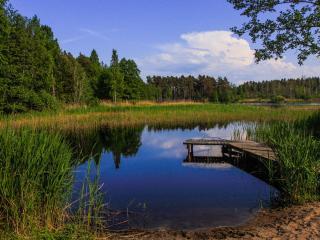 обои Пруд летом в местечке Кабернемэ, под Таллином фото