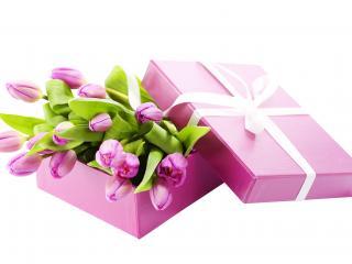 обои для рабочего стола: Тюльпаны в подарок