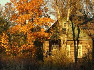 обои Осенний сельский пейзаж у дома фото