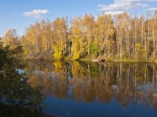 обои Озеро у осенних берез фото