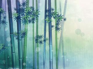 обои Бамбуковая роща фото