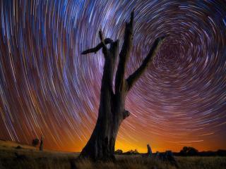 обои Движение звезд фото
