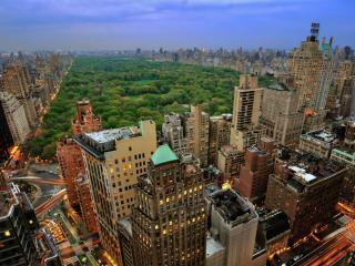 обои Нью Йорк - Центральный парк фото