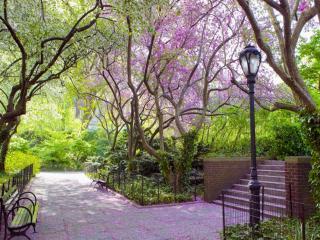 обои Центральный парк Нью Йорка фото