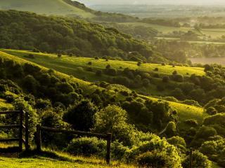 обои Живописная изумрудная долина фото