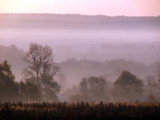 обои Осенние туманы фото
