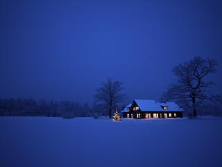 обои Зимний ночной пейзаж фото