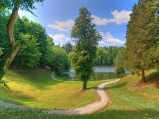 обои Извилистая тропинка к озеру фото