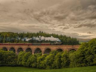 обои Поезд несущийся по мосту фото