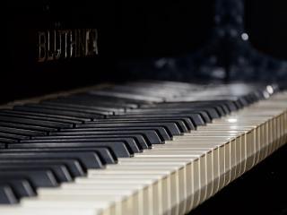 обои Клавиши пианино Bluthner фото