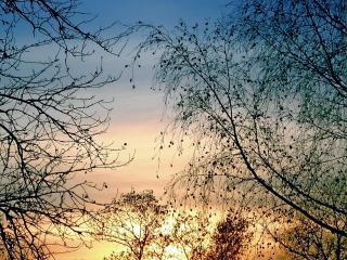 обои Вечернее осеннее небо фото