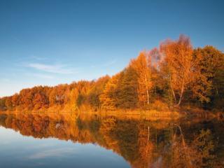 обои Осенний минимализм на озере фото