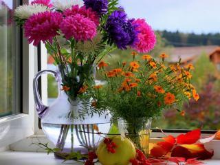 обои Натюрморт - Осень на окне фото