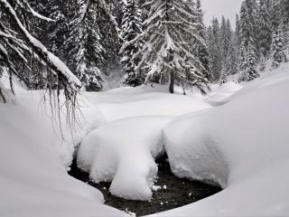 обои Зимний ручей, под толстым слоем снега фото