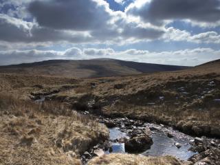 обои Летний ручей в долине,   под облачным небом фото
