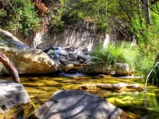 обои Весенний ручей,   где-то в лесном уголке фото