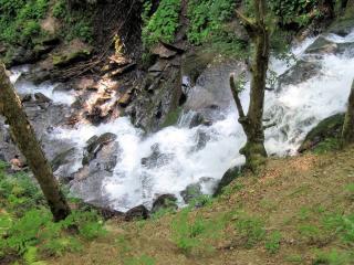обои Летний ручей,   на крутом склоне фото