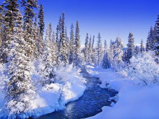 обои Зимний ручей,   в ясный морозный день фото