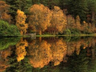 обои Пруд Гленко-Лохан осенью, Шотландия фото