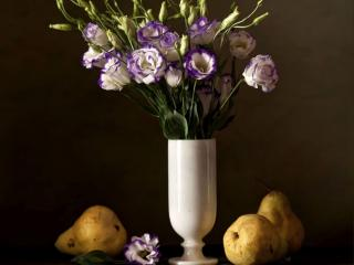 обои Натюрморт - Цветы и груши фото